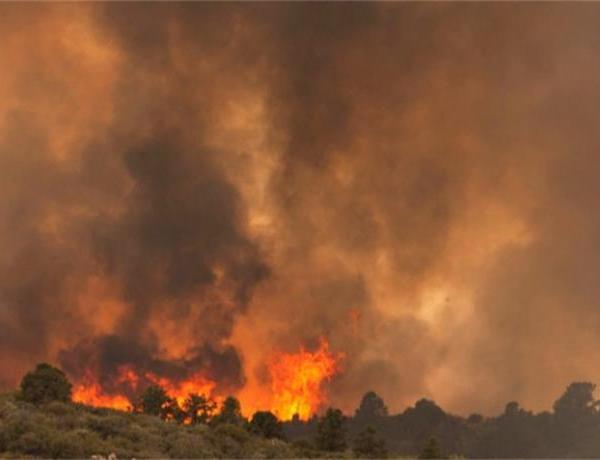 19 Firefighters Dead in Arizona Wildfire_8516341794208695868