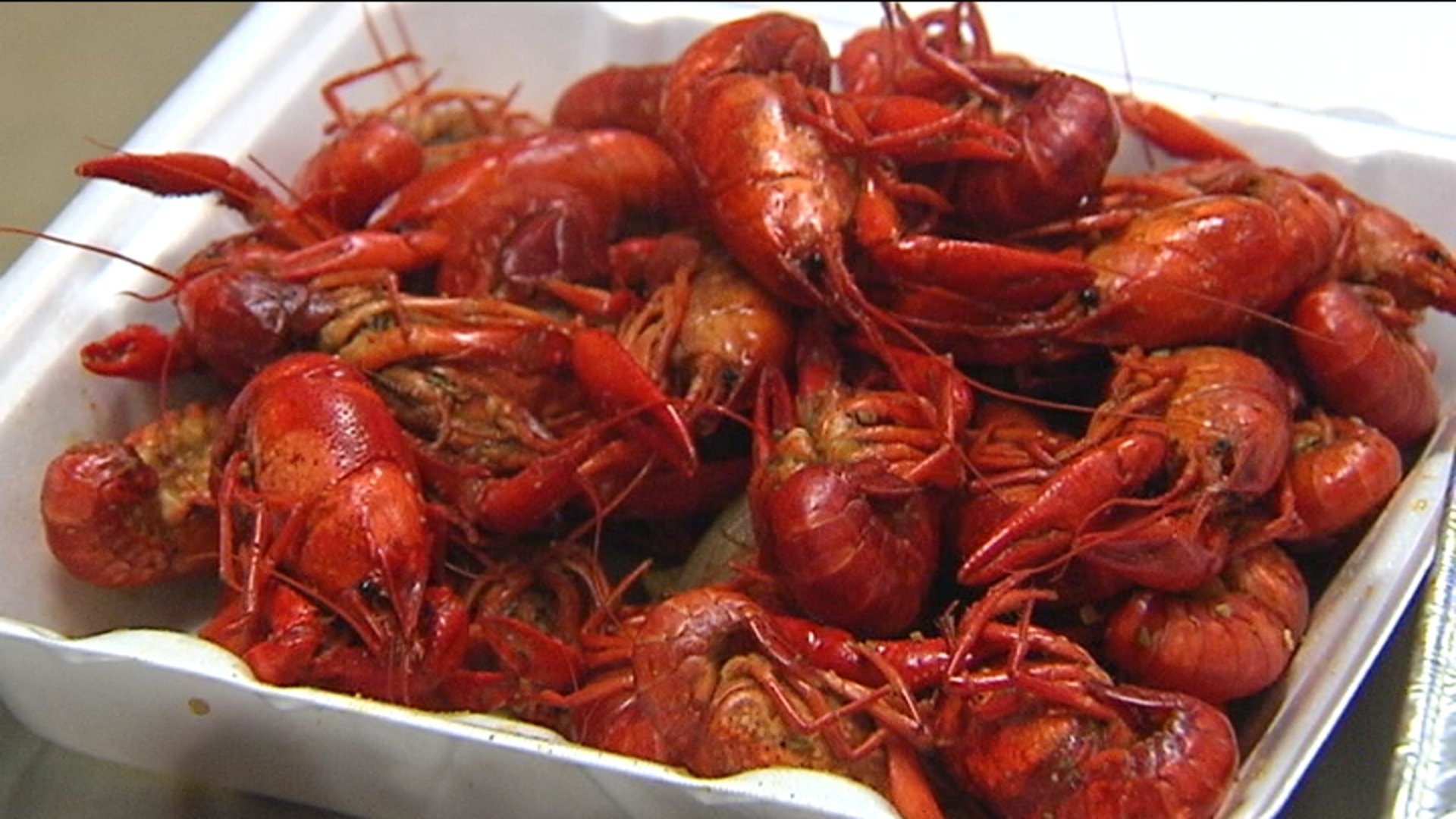crawfish_1455060866341.jpg