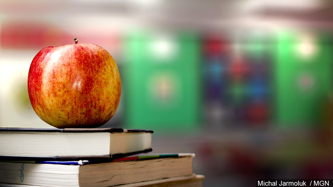 Apple Books School
