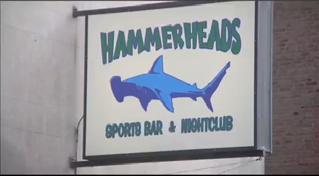 HAMMERHEADS_1458875173276.png