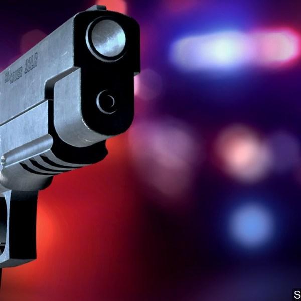 shooting generic 1 gun police background