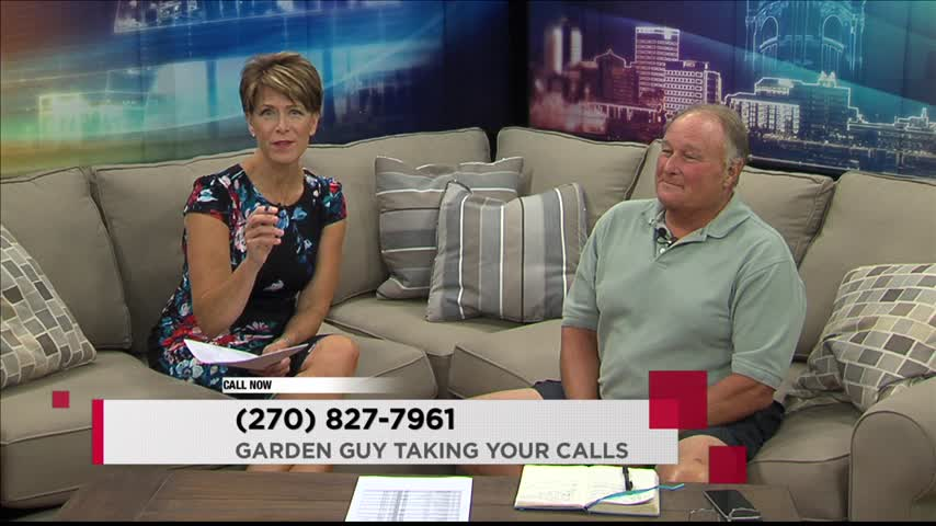 Charlie Stocker Takes Your Calls -7-18-16-_56825608-159532