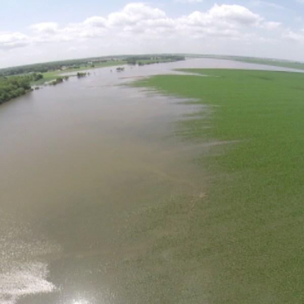 flooding 3_1468624107550.jpg