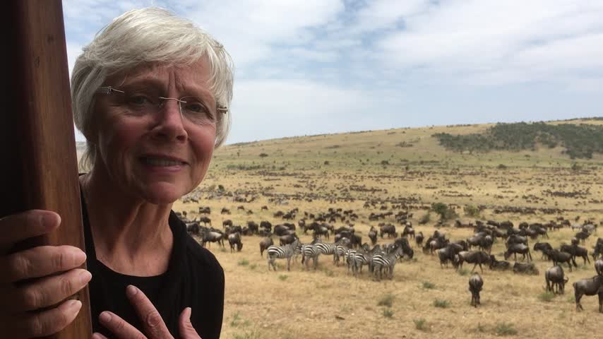 Ange with Wildebeests and Zebras_66287873-159532