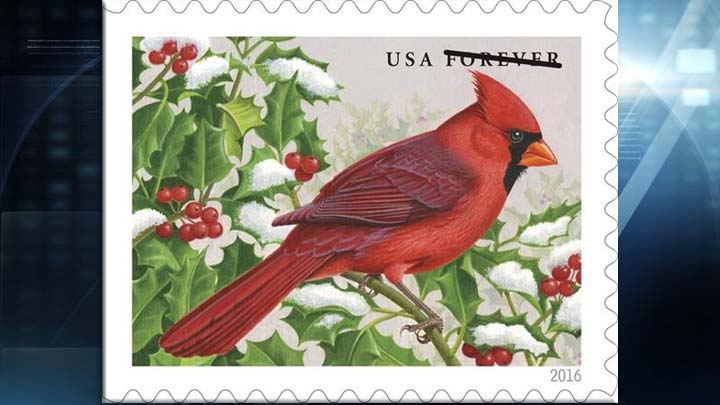 forever stamp northern cardinal web_1470764618976.jpg