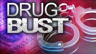 Drug Bust generic