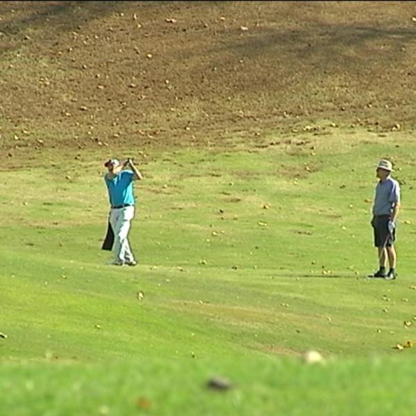 golf fees 1_1481759457459.jpg