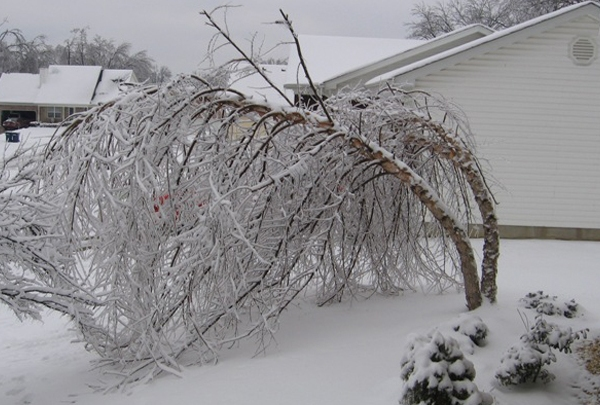national weather service 2009 ice storm_1485535124685.jpg