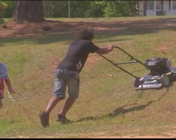 Lawn Mower Surprise_68495464