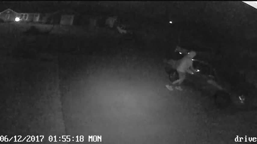 Car Break Ins Jasper 2_40072660
