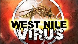 West Nile Virus_1505359543297.jpg