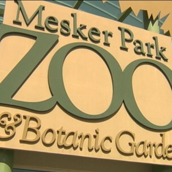 mesker zoo director_1504650083823.jpg