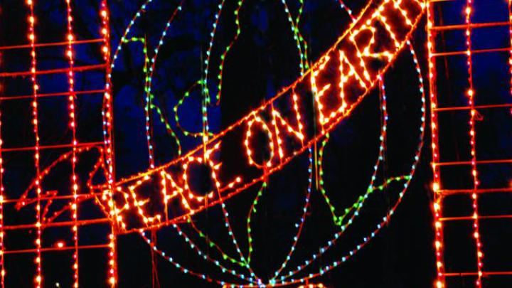 fantasy of lights FOR WEB_1511349040518.jpg