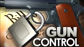 Gun Control_1519790563095.jpg.jpg