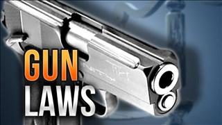 Gun Laws_1520998585399.jpg.jpg