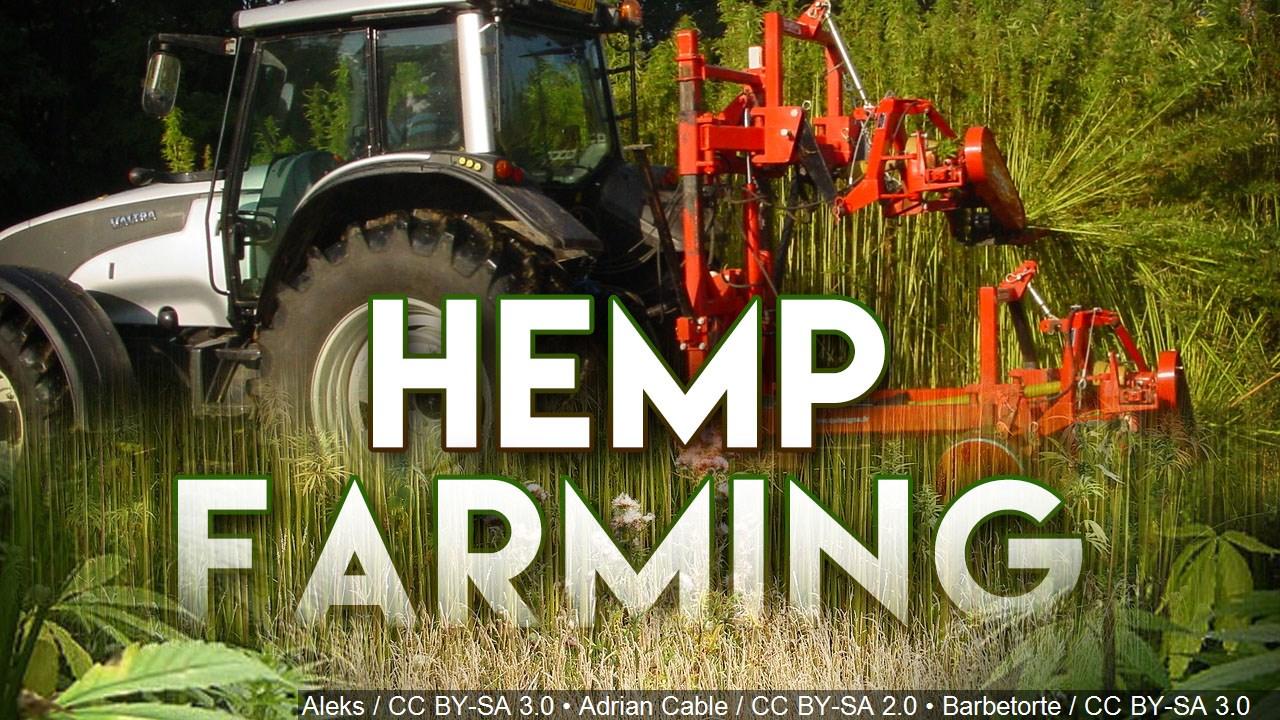 hemp farming mgn_1522088255961.jpg.jpg