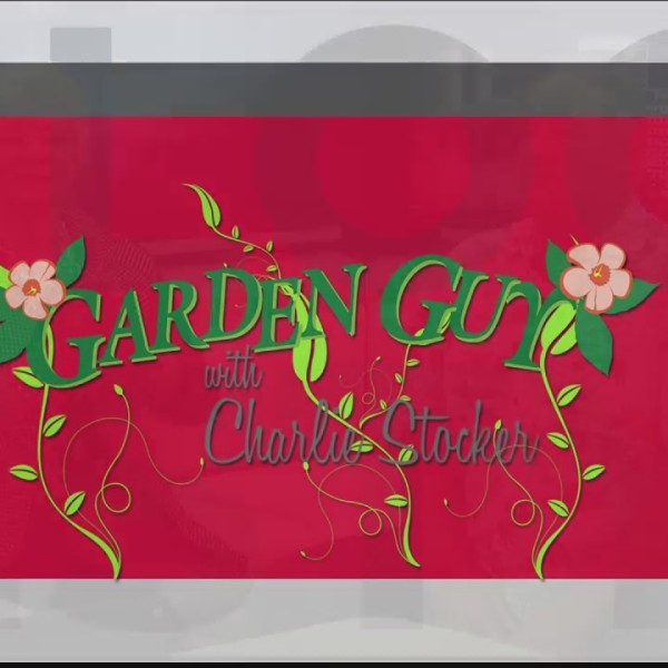 Garden_Guy_Charlie_Stocker_Pt__1__6_4_18_0_20180604174321