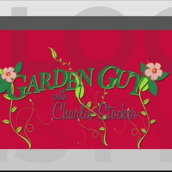 Garden_Guy_Charlie_Stocker__6_18_18__Pt__0_20180618171500