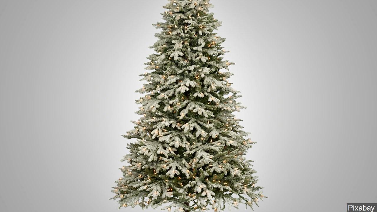 christmas tree generic_1513961568447.jpg.jpg