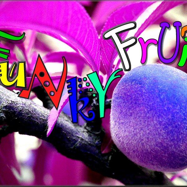 1_FuNkY_FrUiT_1547657246794.jpg