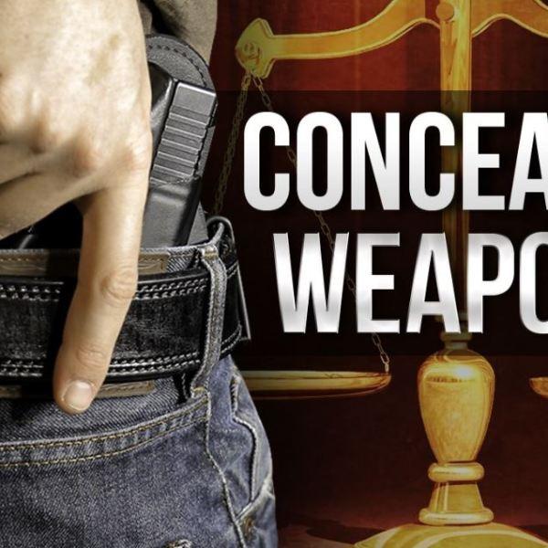 concealed weapons_1552389696739.JPG.jpg