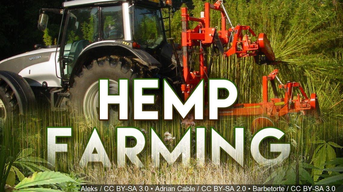 hemp farming_1553077696379.JPG.jpg