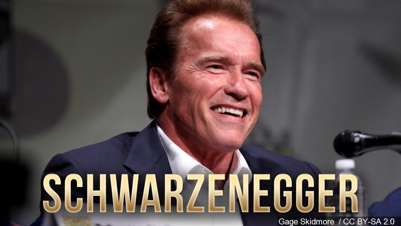 Schwarzenegger mgn_1558980759786.jpg.jpg