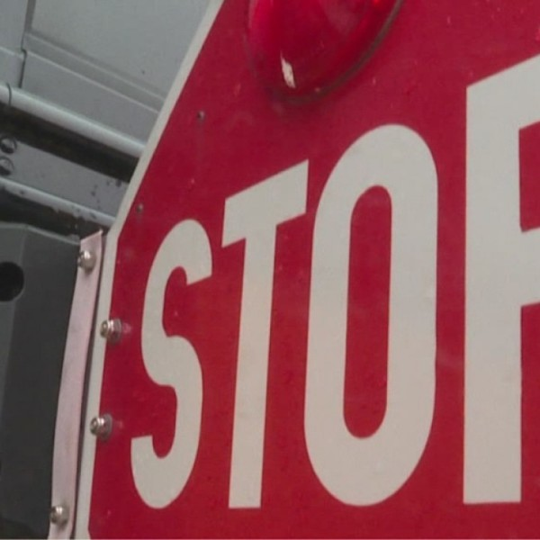 Sen. Young introduces Stop for School Buses Act