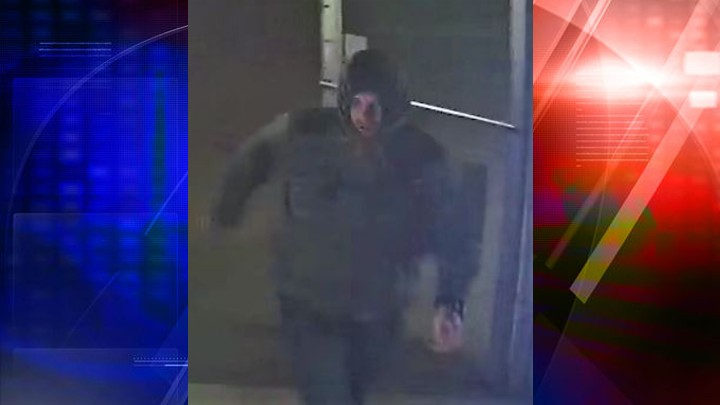 Suspect in Pappy's burglary