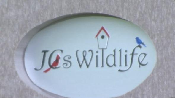 JC's Wildlife